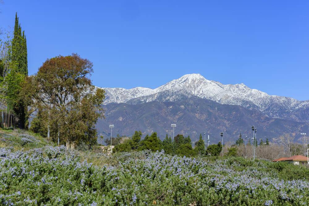 Mount Baldy (Mount San Antonio)